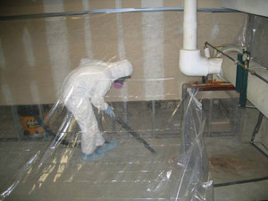 Mold Mitigation Johnsburg