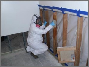 Mold Remediation Lake in the Hills IL